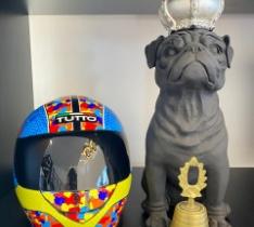 capacete excultura cachorro